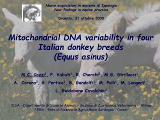 Mitochondrial DNA variability in four Italian donkey breeds Equus asinus