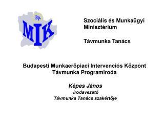 Budapesti Munkaerőpiaci Intervenciós Központ Távmunka Programiroda