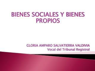 BIENES SOCIALES Y BIENES PROPIOS GLORIA AMPARO SALVATIERRA VALDIVIA Vocal del Tribunal Registral