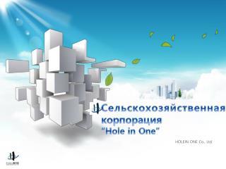 """С ельскохозяйственная корпорация  """"Hole in One"""""""