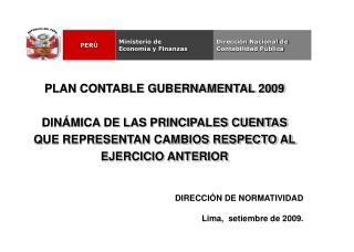 PLAN CONTABLE GUBERNAMENTAL 2009  DIN MICA DE LAS PRINCIPALES CUENTAS QUE REPRESENTAN CAMBIOS RESPECTO AL EJERCICIO ANTE