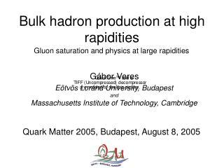 Bulk hadron production at high rapidities