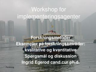 Workshop for implementeringsagenter