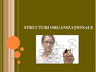 STRUCTURI ORGANIZAŢIONALE