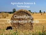 Agriculture Science  Technology   Classifying Ornamental Plants