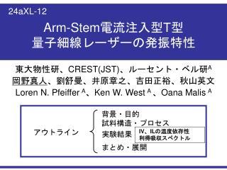Arm-Stem 電流注入型 T 型 量子細線レーザーの発振特性