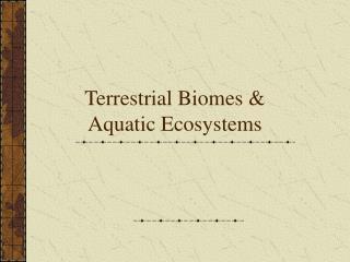 Terrestrial Biomes &  Aquatic Ecosystems