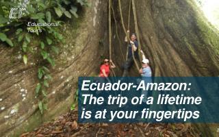 Ecuador-Amazon: The trip of a lifetime is at your finge r tips