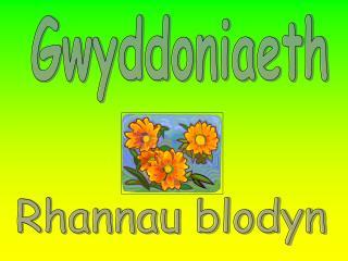Gwyddoniaeth