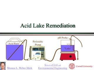 Acid Lake Remediation