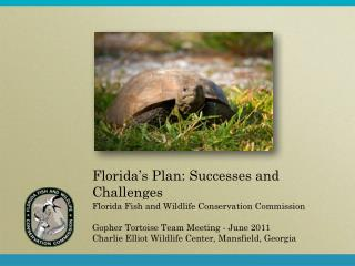 Florida's Plan: Successes and Challenges