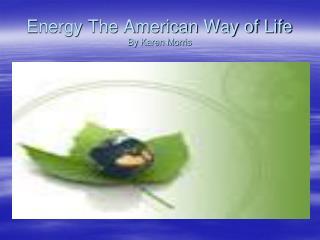 Energy The American Way of Life By Karen Morris