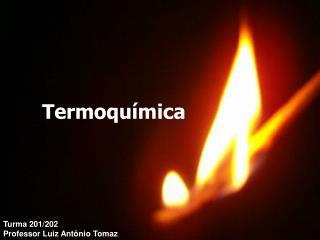 Turma 201/202 Professor Luiz Antônio Tomaz