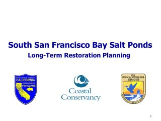 South San Francisco Bay Salt Ponds Long-Term Restoration Planning