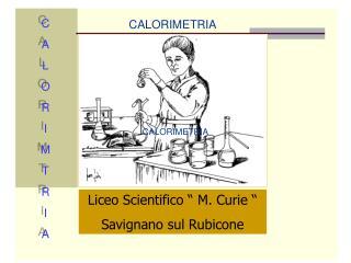 """Liceo Scientifico """" M. Curie """" Savignano sul Rubicone"""