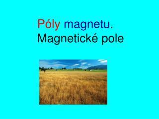 Póly magnetu . Magnetické pole