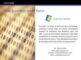 how business takes form