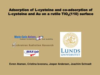 Adsorption of L-cysteine and co-adsorption of  L-cysteine and Au on a rutile TiO 2 (110) surface