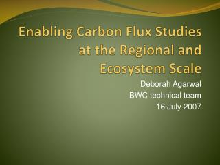 Enabling Carbon Flux Studies at the Regional and Ecosystem Scale