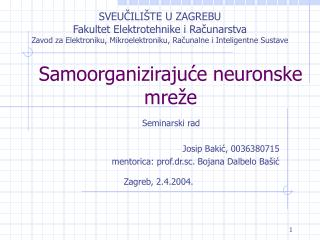 Samoorganizirajuce neuronske mre e