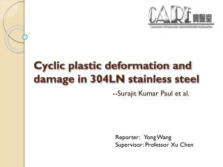 Cyclic plastic deformation and damage in 304LN stainless steel