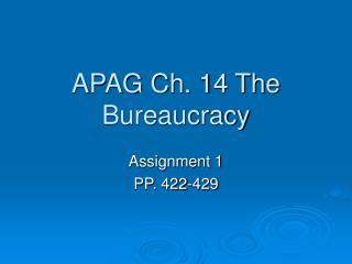 APAG Ch. 14 The Bureaucracy
