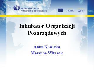 Inkubator Organizacji Pozarządowych