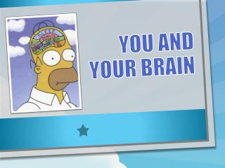 You and your brain