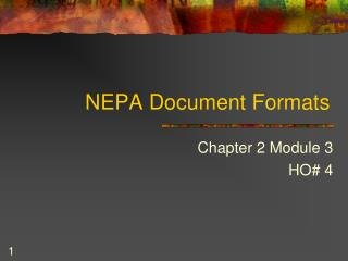 NEPA Document Formats