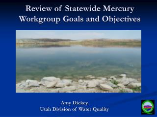 Review of Statewide Mercury Workgroup Goals and Objectives