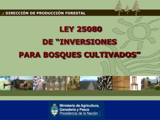 .: DIRECCIÓN DE PRODUCCIÓN FORESTAL