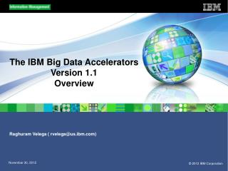 The IBM Big Data Accelerators Version 1.1 Overview