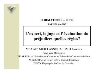 FORMATIONS   E F E  PARIS 20 juin 2007  L expert, le juge et l  valuation du pr judice: quelles r gles