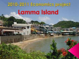 2010-2011 Economics project