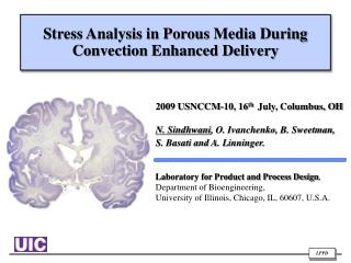 Stress Analysis in Porous Media  During  Convection Enhanced Delivery
