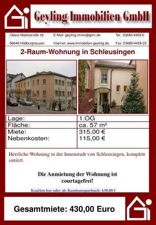 2-Raum-Wohnung in Schleusingen