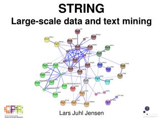 STRING Large-scale data and text mining