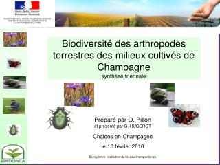 Biodiversité des arthropodes terrestres des milieux cultivés de Champagne synthèse triennale