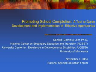 Camilla (Cammy) Lehr, Ph.D. National Center on Secondary Education and Transition (NCSET)