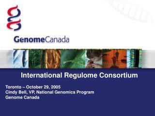 International Regulome Consortium  Toronto – October 29, 2005