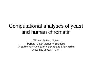 Computational analyses of yeast and human chromatin
