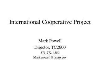 International Cooperative Project
