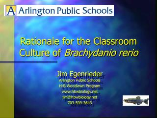 Rationale for the Classroom Culture of  Brachydanio rerio