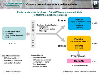 Cancers bronchiques non à petites cellules