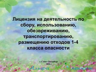г. Санкт-Петербург 2010 г.
