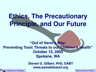 Ethics, The Precautionary Principle, and Our Future