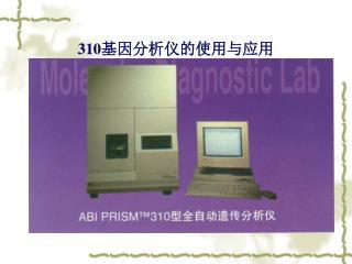 310 基因分析仪的使用与应用