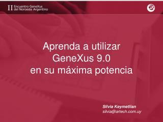 Aprenda a utilizar GeneXus 9.0  en su máxima potencia