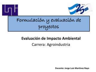 Formulaci�n y evaluaci�n de proyectos