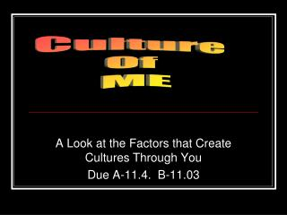 A Look at the Factors that Create  Cultures Through You Due A-11.4.  B-11.03